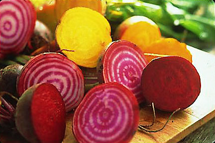 Heirloom Beet Varieties