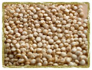 Uncooked Quinoa Grain