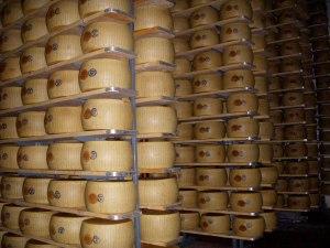 Parmaggiano Reggiano Factory
